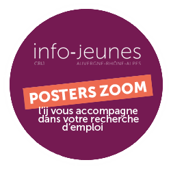 Posters Zoom JOB 2020 (extraction du guide Trouver un job)